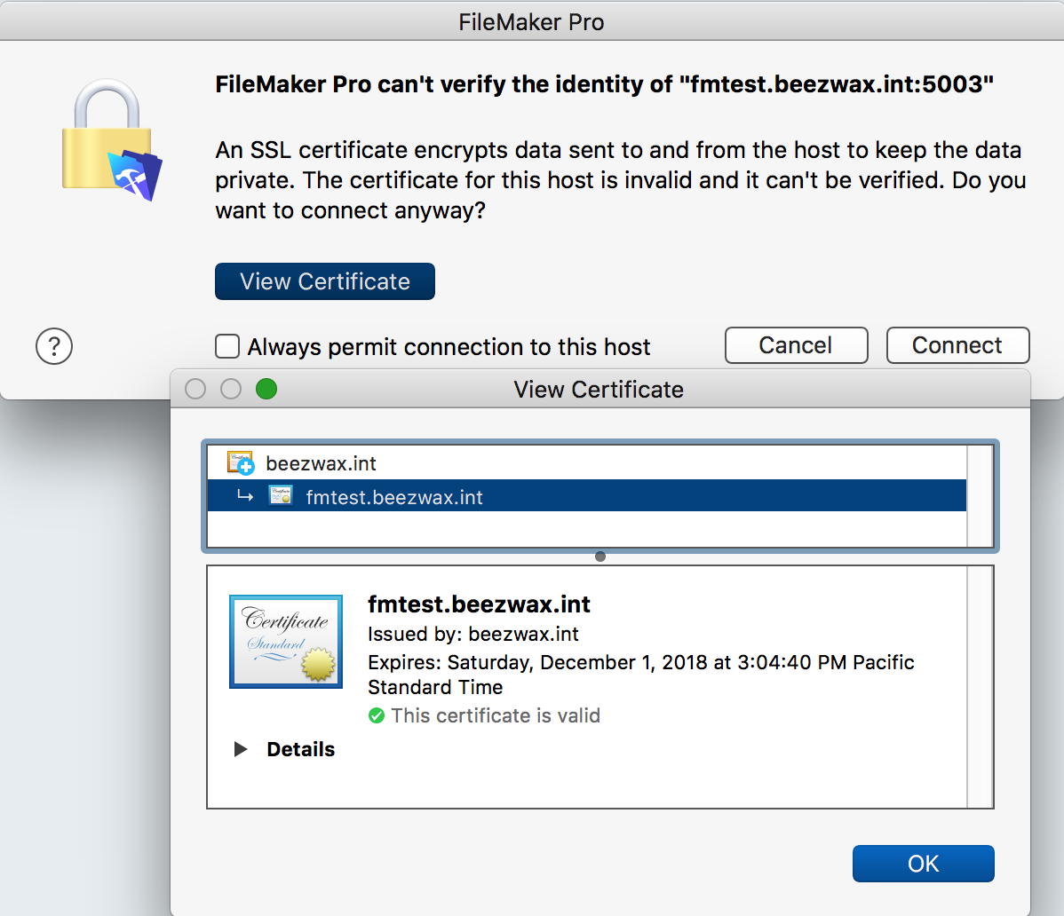 FileMaker Pro certificate warning