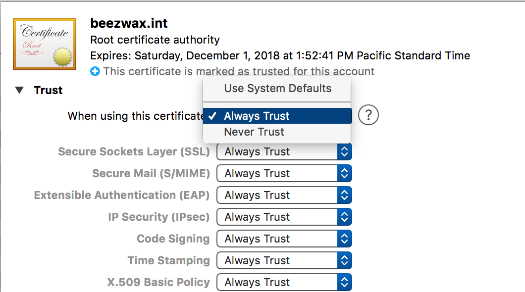 Creating Your Own Ssl Certificates For Filemaker Beezwax Blog